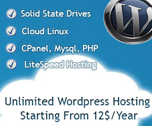 Unlimited WordPress Hosting Package
